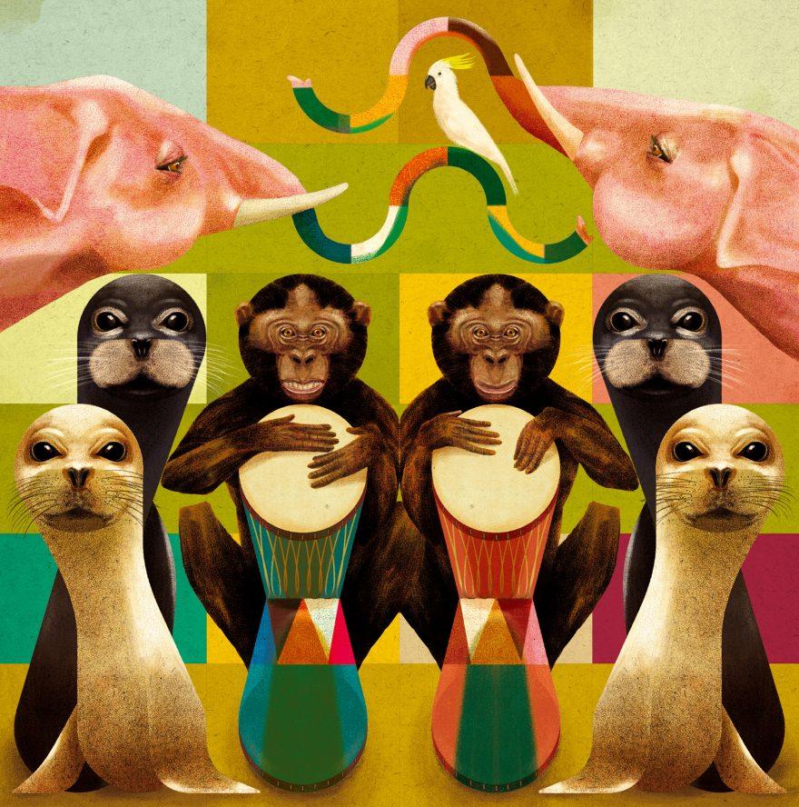 Animal Rhythm