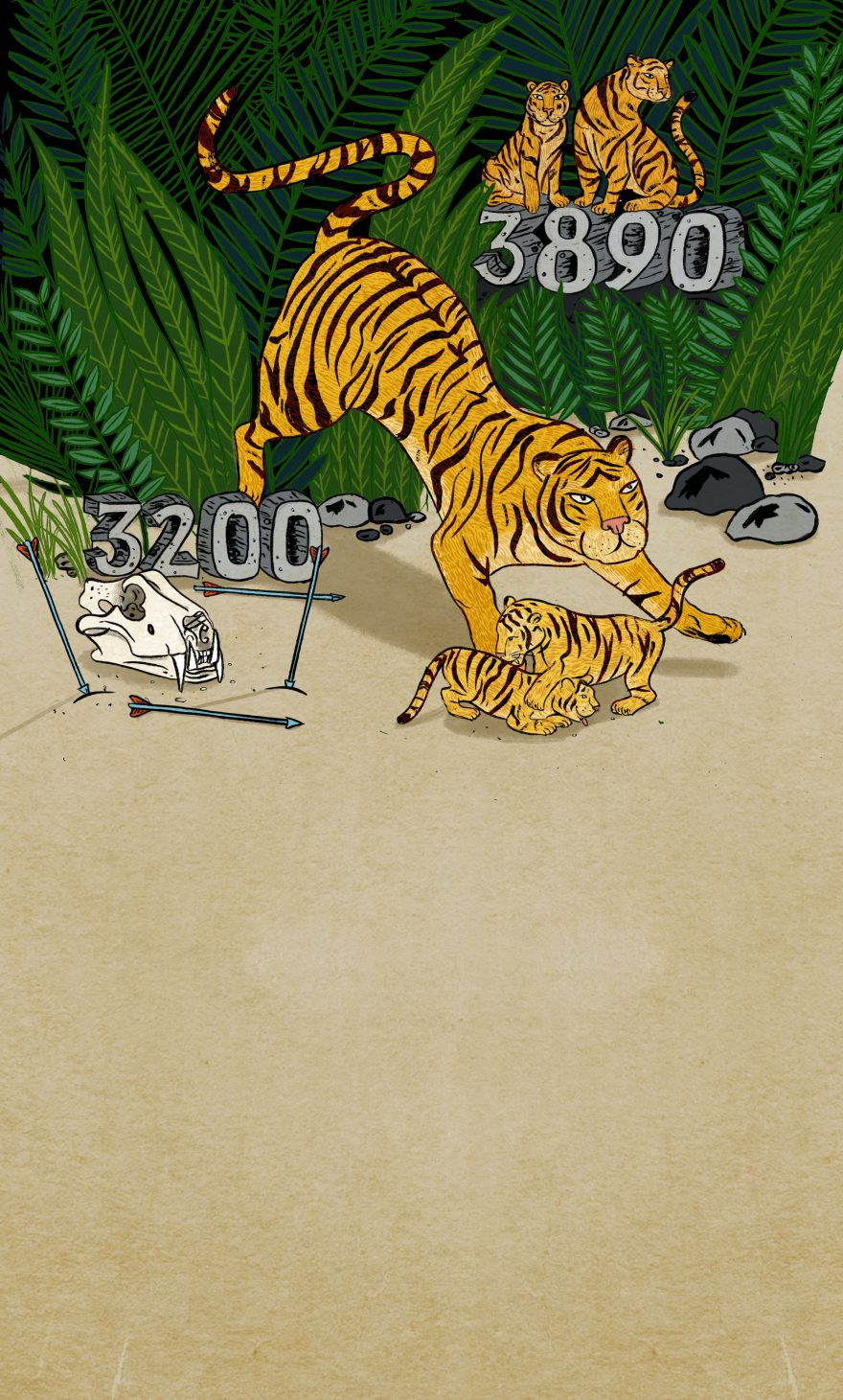 Tigers, Two Numbers